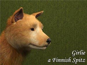 Собаки - Страница 2 Bc45b7421815