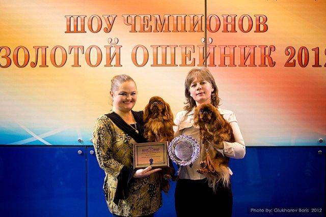 """Шоу Чемпионов """"Золотой ошейник"""" (РКФ) 2012 г. C6a0de201730"""