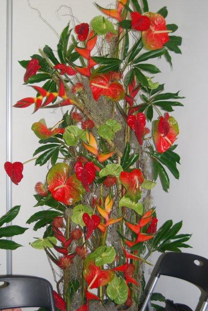 Международная выставка цветов AstanaFlorExpo - 2011 03be63d1512f