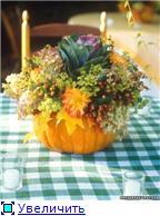 Наши домашние растения - Страница 2 E57b74a3d910t