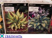 ЧТО, ГДЕ, ПОЧЕМ. Москва - Страница 10 49b142b99965t