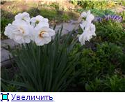 Весна идет, весне дорогу! - Страница 8 Ad894dba985dt