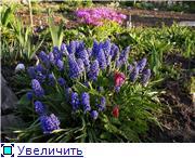 Весна идет, весне дорогу! - Страница 8 C6b54baf3f91t