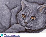 Работы от Елены - Страница 4 65a901415dcat