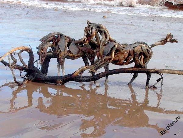 Потрясающие деревянные лошади F3a4585d0010
