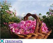 Моя Болгария. Рассказывает Eli4ka D525b73a6979t