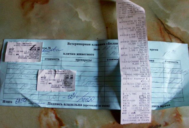 Москва, Рони, кобель боксера, 5 лет  - Страница 5 Df696283e796