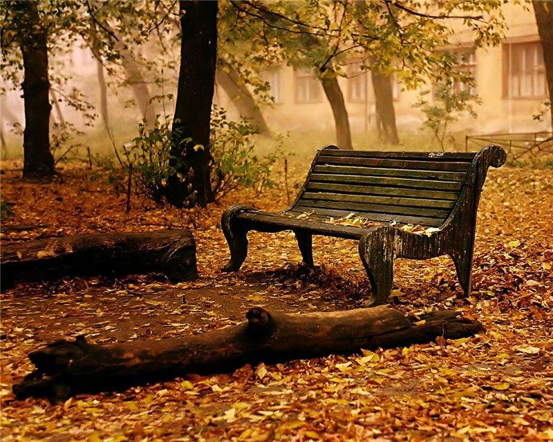 ბუნების ლამაზი ფოტოები 6dd023dc6941