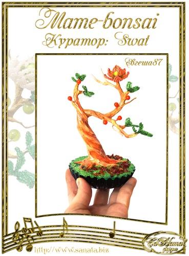 """Галерея """"Mame-bonsai"""" 2e0124a898fft"""