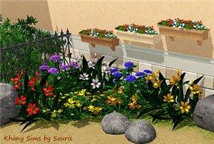 Цветы - Страница 4 8e1ef2cf4d8d