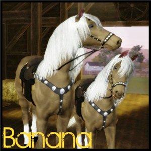 Лошади 7acb0cb3f907