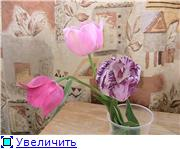 Курорт Шмаковка Ae46a16b4f75t