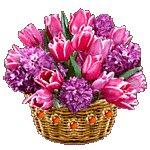 Поздравляем с Днем Рождения Галину (Галина_ВГ) 8cd5f6f93c3ft