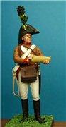 VID soldiers - Napoleonic austrian army sets E4babda2b501t