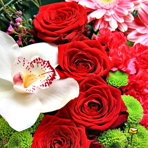 Поздравляем Инну(IKSem с днем рождения!!!!! 4b639988b2cc