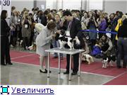 ЕВРАЗИЯ - 2012 643568f6bf50t