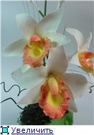 Цветы ручной работы из полимерной глины - Страница 4 47aa3e92e214t