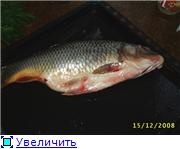 Рыба - Страница 2 Df20ccffa2cat
