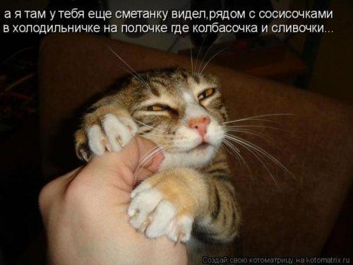 Смешные картинки 809e68794af1