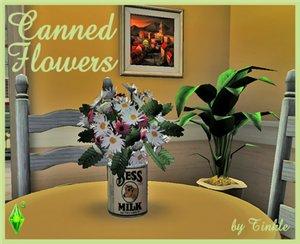 Цветы - Страница 5 D1a909b52f47