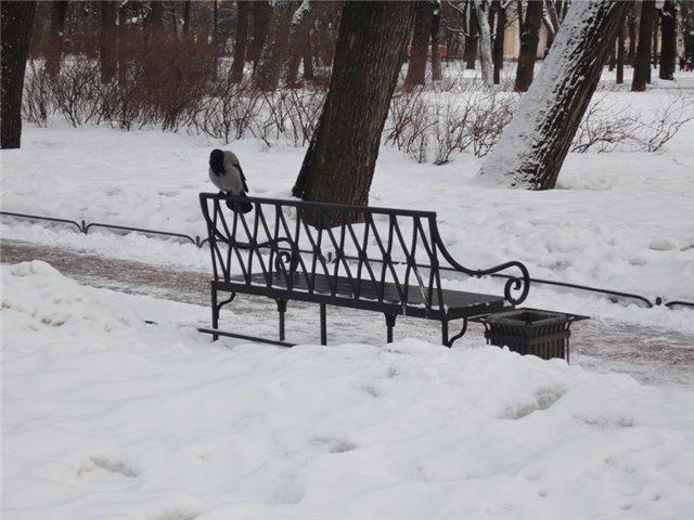 Зимняя сказка на наших фотографиях - Страница 4 A4361023b6a8