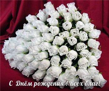 Поздравляем с Днем Рождения Надежду (надежда70) 277be5a319e6t