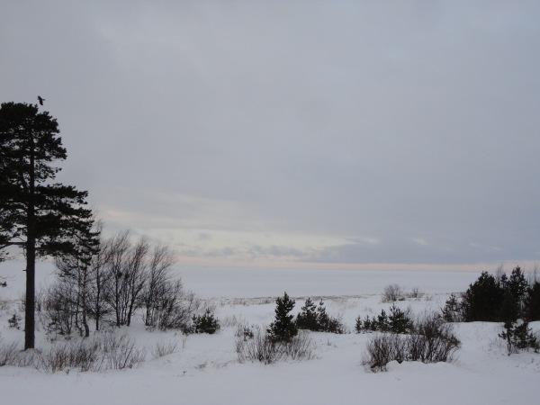 Белое море - вот ты какое.... - Страница 12 1447bc99e48a
