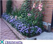 Лето в наших садах - Страница 6 B8ccef5d347ft