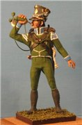 VID soldiers - Napoleonic wurttemberg army sets 488a1082957ft