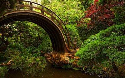Мост. 286485_278904