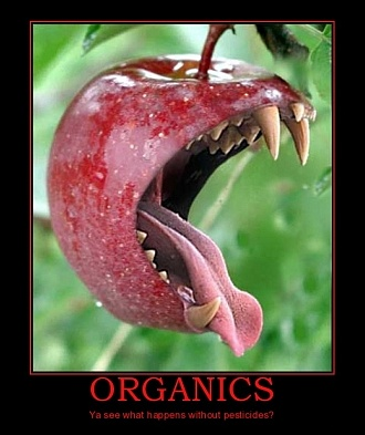 Monsanto / décryptages Organic-food-without-pesticides