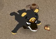 I FOUND MY SCREENIES! Jehani_the_bear
