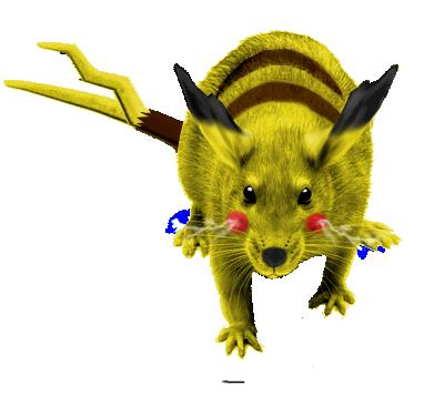 Le Bestiaire Pikachu