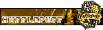 Učenik Hufflepuffa