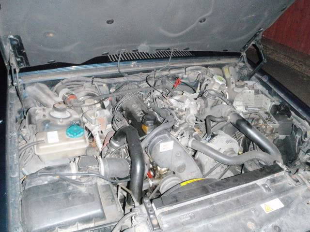 Volvrat II - Zippy Lea - Volvo 940 V8 P7192107