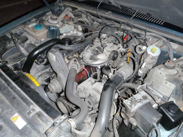 Volvrat II - Zippy Lea - Volvo 940 V8 P7192108