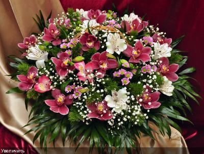 Поздравляем с Днем Рождения Ларису (Лариса Булгакова) Ffa0950b89d67c1db9c968a2b8e0d8c4
