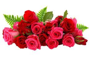 Галерея - Роза - лепка из холодного фарфора  5cfe2023f3fcdf4219ae0d31805ee0ce