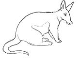 Nanook     Aardvark1outline