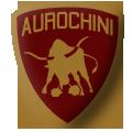Coupe d'Europe de Quidditch - Boutique Officielle Aurochini_1