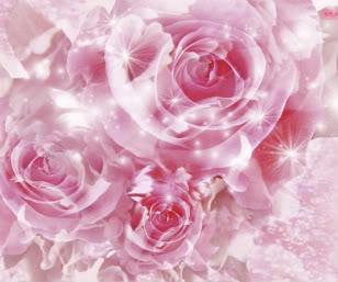 free forum : September 2007 mummys - Portal Pink_flowers-1