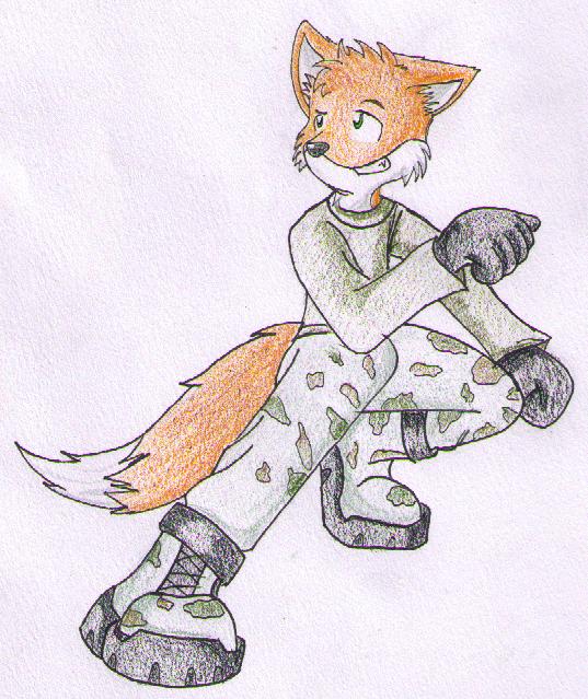 BradHummr's Character(s) S14Fox
