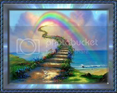 Sad day Bonkers passed away Rainbowbridge