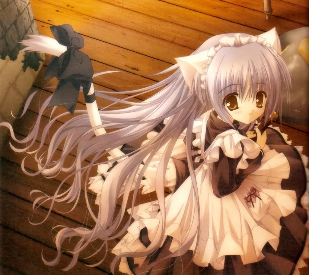 [fanfiction]TRUYỀN THUYẾT VỀ 12 CUNG HOÀNG ĐẠO Anime-cat-girl
