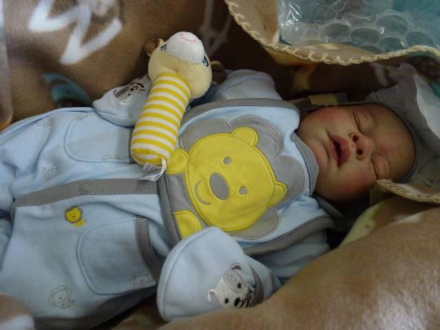 My Swap 2013 baby P1000610