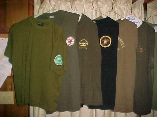Polish Regimential badges MVC-001S