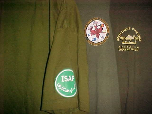 Polish Regimential badges MVC-005S