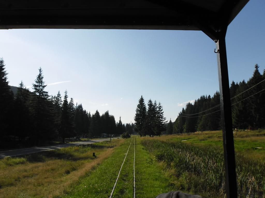 Caile ferate forestiere - Pagina 2 SAM_0416