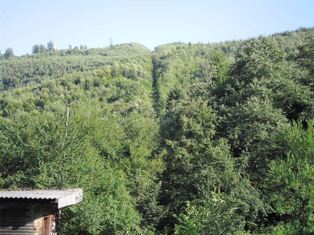 Caile ferate forestiere - Pagina 2 SAM_0430