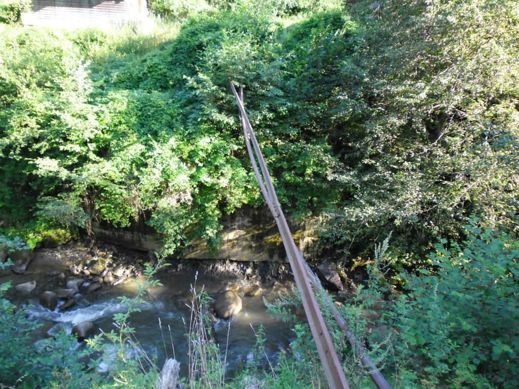 Caile ferate forestiere - Pagina 2 SAM_0431